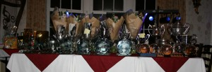 The Trophies and Awards